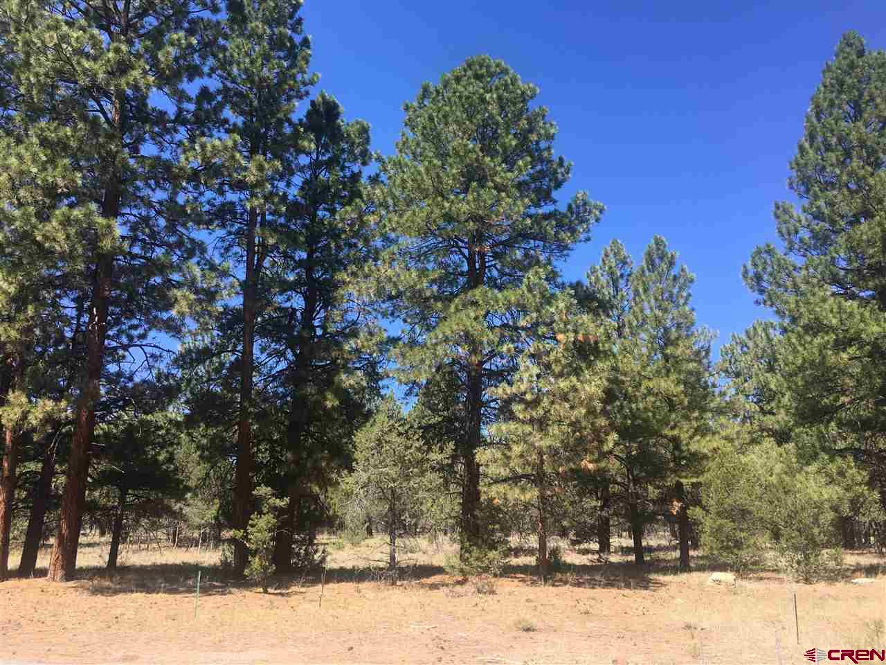 Fantastic lot located in the Divide Ranch and Club. This property offers multiple building sites to choose from, as well as gorgeous ponderosa trees for privacy. All utilities are to the lot line.  Approximately 1/4 mile from the clubhouse and golf course, allowing you quick access for your tee time or drinks with friends! Only 15 minutes to the Town of Ridgway, 45 Minutes to Telluride, and 35 Minutes to Montrose. This is where you want to be!