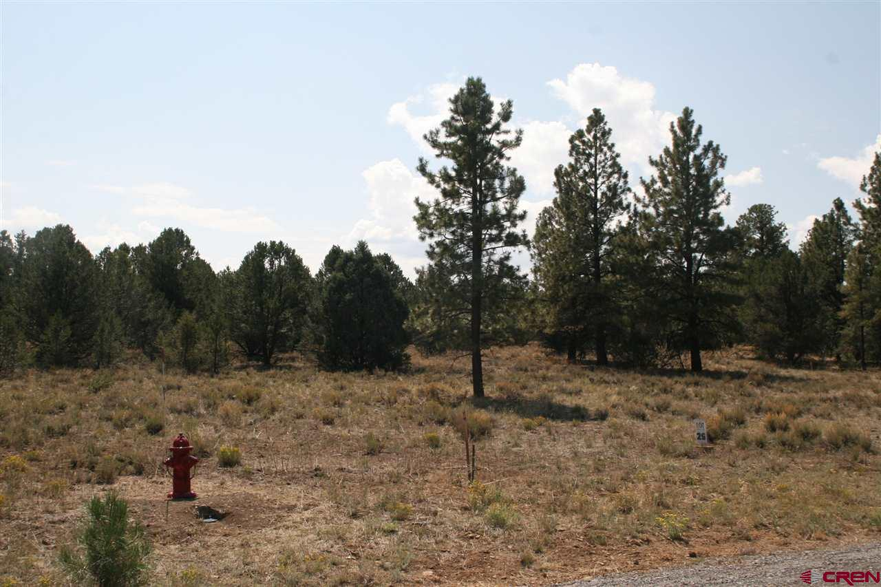 Larger 6.59 acre lot, level with Ponderosas, Juniper and Cedar trees.  This lot does have South views of the San Juan Mtns. and east views of the Cimarrons from a second story home.  Very hard to see the view potential right now with the trees.  There may be views from the first floor if the foundation is raised. Building site will be very private!