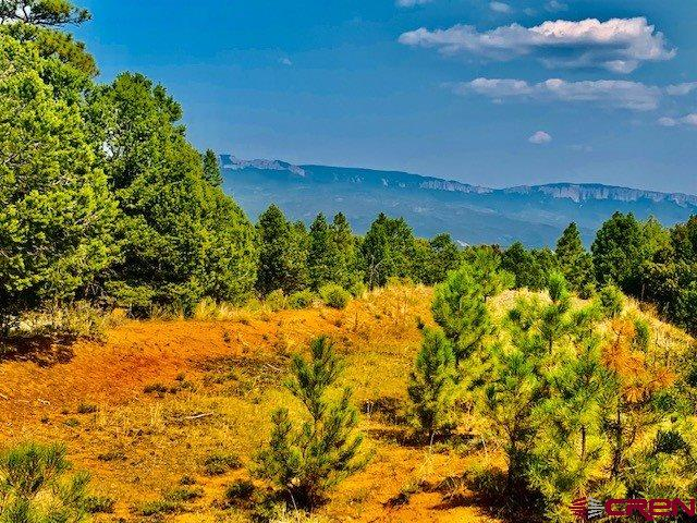 Gorgeous 4 acre estate lot with panoramic view of the mountain and grand mesa. Great building site, level lot with all underground utilities to lot line and paved roads. .  Build your dream home and enjoy the privacy of a large treed lot with towering Ponderosa Pines and amenities and golf close by. Ownership includes The Divide Ranch and Golf Club with its 7038 YD, 18 hole award winning golf course. lay this beautiful course as often as you can and pay only the cart fees. The fabulous clubhouse is a stone's throw away, so enjoy Friday Night Burger Night (see clubhouse schedule) and walk home. Located just 6 miles from the historic town of Ridgway, 30 minutes from Montrose Regional Airport; 45 minutes from Telluride's world class skiing and 10 miles from Ouray's famous hot springs and the San Juan Skyway. Located on Log Hill, this community is only 45 minutes from Telluride's world-class skiing; 30 minutes to Montrose Regional Airport and 5 miles from downtown Ridgway and 14 miles to Ouray.
