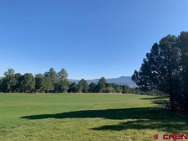 Gorgeous views of the 12th fairway and Cimmaron mountain views at the back of this lot.  Ponderosa pines tower over this beautiful easy build lot.  Play unlimited golf (cart fees only) with your Founders Club membership in the summer and cross country ski or snowshoe right our your door in the winter. With Ridgway and Ridgway State Park only 7 miles away,  Ouray 17 miles and Telluride only 35 miles you have the splendor and beauty of the Western slope and its wide array or outdoor recreation; hiking, mountain climbing, ice climbing, biking, fishing, skiing