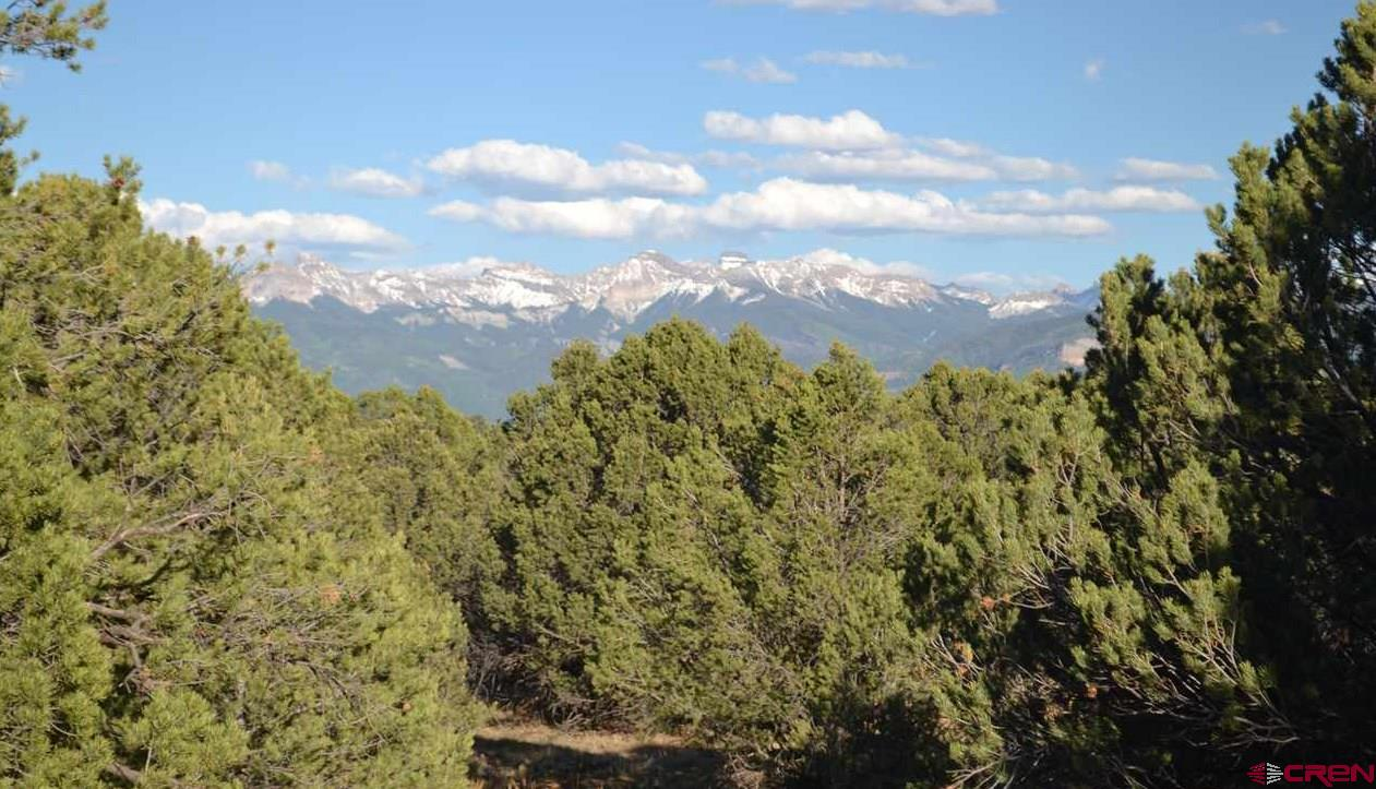 This beautiful building site of your future dream home comes with views of the San Juan and the stunning Cimarron mountain range.  This mostly level lot with gradual sloping helps to enhance your privacy and the views.   Easy access is via a paved road.  You can enjoy the Divide Golf Course which is about 1 mile south of this lot.  Owner has agreed to pay for the water tap for you.  All other utilities are near the property.  Easy access to Telluride for the ski enthusiast or someone who loves, the arts and music Telluride offers.   A quick 35 minutes to Montrose for all your occasional needs including medical care, grocery stores, recreational center and more.   10 minutes to Ridgway provides you with a wide range of festivals, music and restaurants.