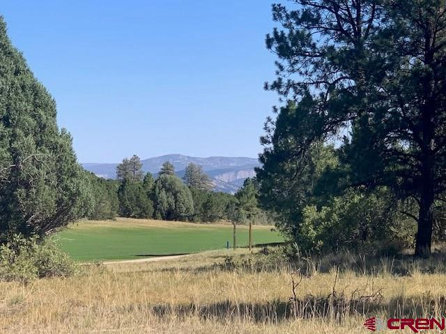 Gorgeous views of the fairway of the 17th hole. Mountain vies and Ponderosa pines tower over this beautiful easy build lot.   Play unlimited golf (cart fees only) with your Founders Club membership in the summer and cross country ski or snowshoe right our your door in the winter. With Ridgway and Ridgway State Park only 7 miles away,  Ouray 17 miles and Telluride only 35 miles you have the splendor and beauty of the Western slope and its wide array or outdoor recreation; hiking, mountain climbing, ice climbing, biking, fishing, skiing