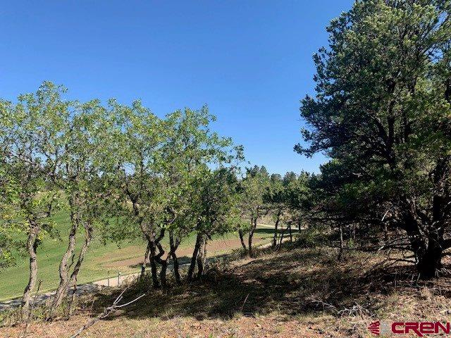 Beautiful mountain and golf course views from this treed lot.  Designated V lots at Divide Ranch & Club allow for a smaller home (min 1600 SF) yet all of the amenities and golf the Club has to offer. Ownership includes The Divide Ranch and Golf Club with its 7038 YD, 18 hole award winning golf course. lay this beautiful course as often as you can and pay only the cart fees. The fabulous clubhouse is a stone's throw away, so enjoy Friday Night Burger Night (see clubhouse schedule) and walk home. Located just 6 miles from the historic town of Ridgway, 30 minutes from Montrose Regional Airport; 45 minutes from Telluride's world class skiing and 10 miles from Ouray's famous hot springs and the San Juan Skyway. Located on Log Hill, this community is only 45 minutes from Telluride's world-class skiing; 30 minutes to Montrose Regional Airport and 5 miles from downtown Ridgway and 14 miles to Ouray.