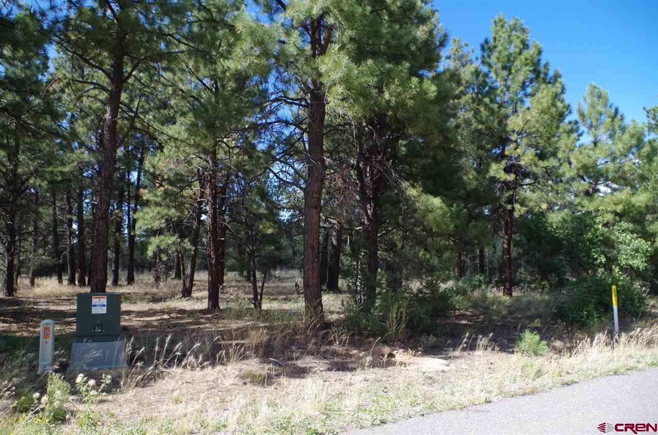 Exceptional flat lot with all the utilities at the property line. Stately stand of Ponderosa Pine trees accent the Pinyons and Junipers and understory plants. Great neighborhood with quality homes in the small subdivision. Convenient location between Montrose and Ridgway. Close to outdoor activities. Site-built shed included. Peekaboo views of Mount Sneffels. Perfect for your dream home.