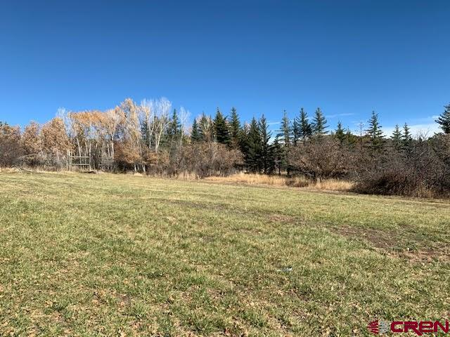 Total Privacy!  Come build your dream home on this 4.45 acres located off Ute Trail Road, just north of town with spectacular views of the San Juan mountain range, the valley below and the Grand Mesa. The property has a well, electric in place, natural gas is available on Ute Trail.  Also included on the property is One Share of Surface Creek Ditch & Reservoir Company and a right in the Texas Ditch as a delivery right, Plus an absolute water right for .20 c.f.s. of water for stockwater use during the non-irrigation season (November 1st through March 31st) from the 10CW124.  There is a creek that runs through the property and deer fencing around the entire property, privacy fence facing the road.  No Covenants or HOA.  Quick access to the Grand Mesa National Forest to enjoy all of the recreational activities it has to offer.  The property has two Tax Parcel numbers, leaving you an option to possibly sell off half of the property, (taxes include both parcels).