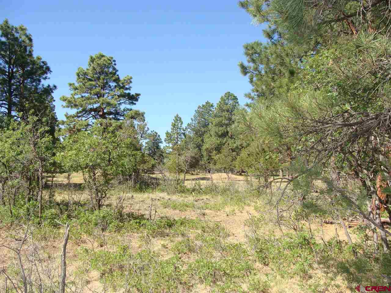 Golf course lot ready for your dream home!  Nicely treed with a lovely building site.  Almost a full acre with underground utilities to the lot line.  Paved roads in the subdivision are beautifully maintained.  One of the best lots available at this price - don't miss! Award winning Divide Ranch & Club Golf course.