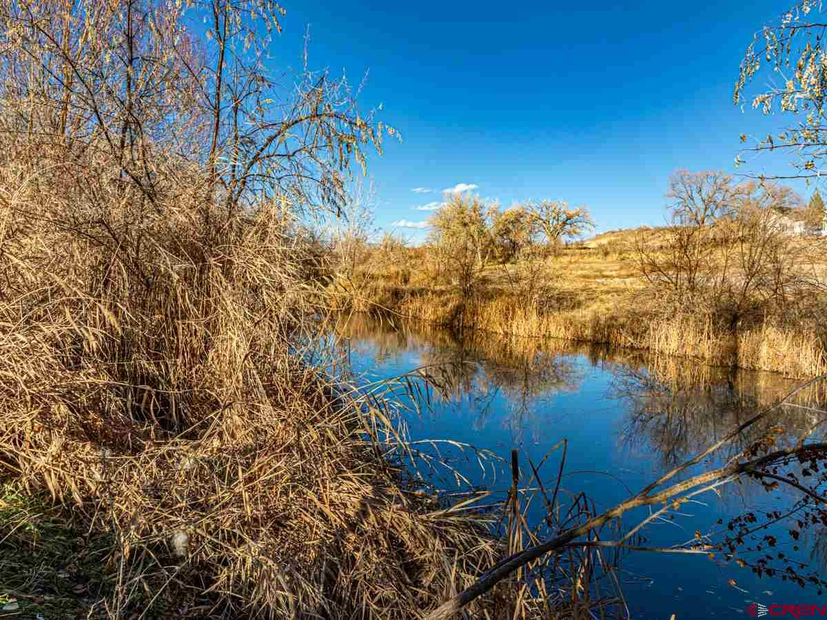 14.32 acre lot with 15 acres of OCID and 15 shares of Butte Ditch located in Austin, CO. The property is nicely treed and has 4 year-round ponds. There are nice views of the Grand Mesa to the north and this property sits in a nice country setting. The property comes with an Orchard City water tap, has electricity & phone nearby and high speed fiber optic internet is available. Just minutes from the Grand Mesa National Forest and only 8 miles from the city of Delta, this property is positioned nicely for work, recreation, hobby farming or country living. The property is situated at 5,350' in elevation and has a temperate climate with mild winters. The ponds attract many ducks and the immediate area has wild turkey and mule deer. Hunting species in the surrounding area include elk, mule deer, black bear and moose. The surrounding areas are also very popular for year-round recreational activities including hiking, reel and fly fishing, mountain biking, ATV, UTV & motorcycle riding, horseback riding, skiing, snowmobiling and more. For the golfer, there are two 18-hole public golf courses nearby.