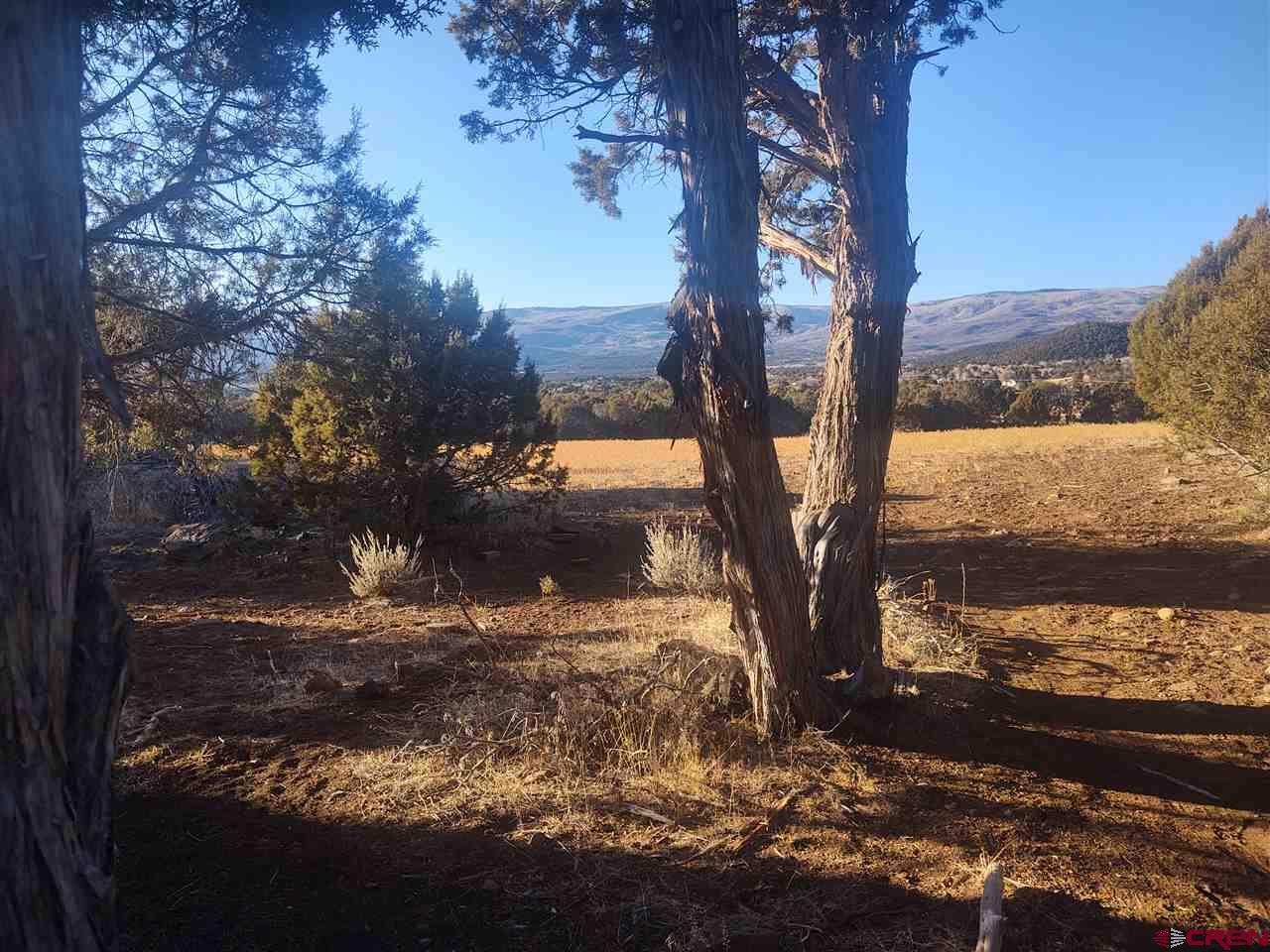 Beautiful 35 acre parcel with big views, very private location. Pinion and Juniper forest north of the town of Cedaredge. In the country but close to schools shopping ect.
