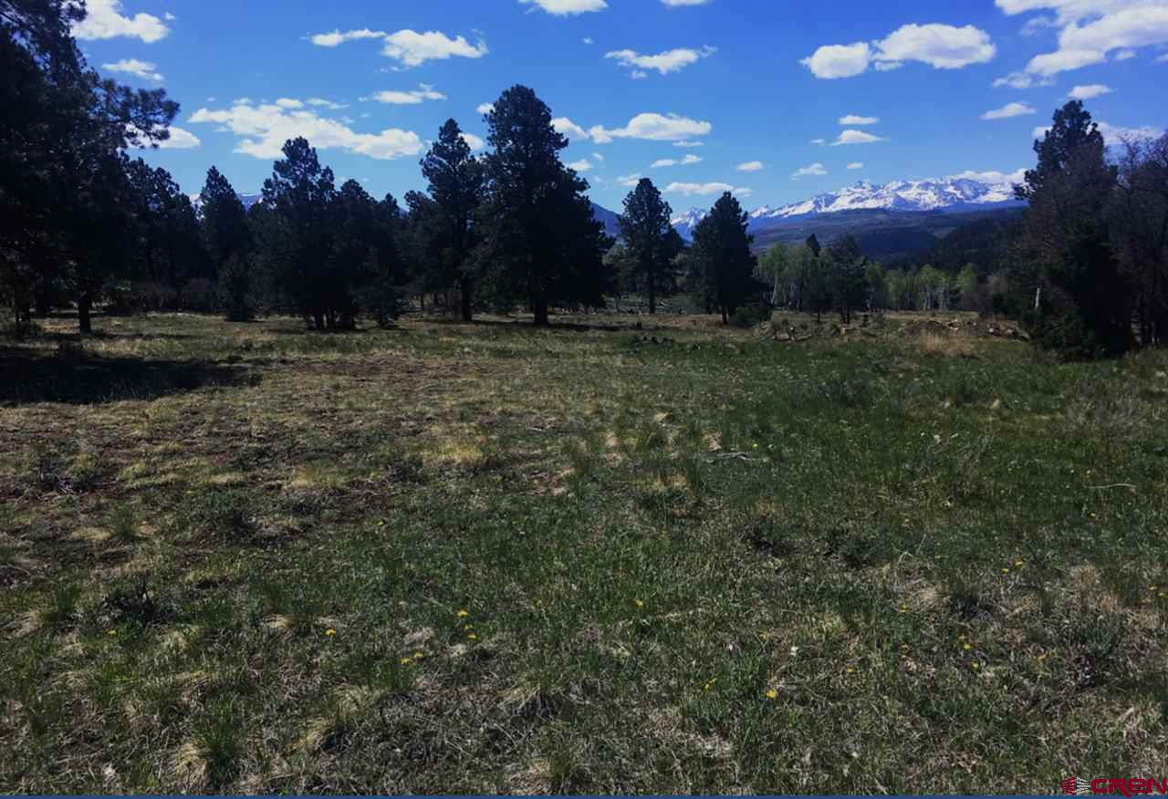 Beautiful Ranch close to Telluride and HWY 62. Open building site with great mountain views. In a conservation designation, low taxes and not in the HOA. Incredible views, a well in place, awesome views! Flat usable land. A road in place, property is fenced. Ready to build and enjoy! A must see for land clients!