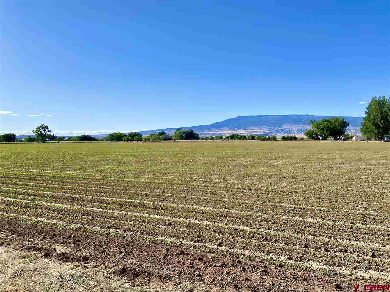 Fantastic California Mesa farm ground! This flat, highly productive acreage has been farmed historically for decades. With beautiful fertile soil, ample irrigation water (34 shares of UVWUA) and gorgeous views in each direction, this parcel is a perfect place to set down some roots. The property is approximately 8 minutes from town, and sits off of a paved county road. Utilities are nearby if one desires to also build a home, shop, etc. Don't let this one pass you by!