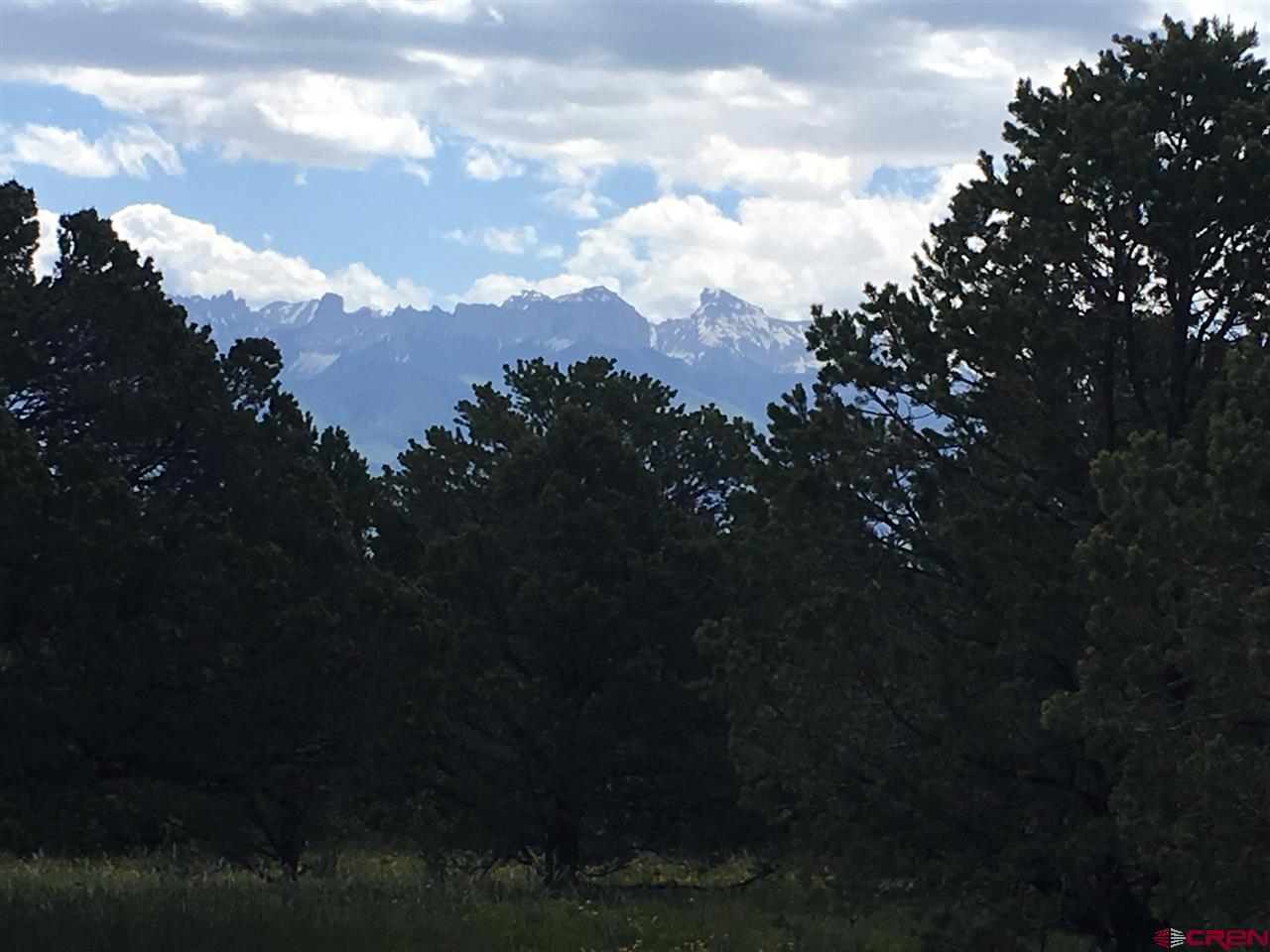 2-5 acre lots available at an affordable price.  The lots are adjacent to each other at the end of Cedar Lane East.  The lots have fantastic Cimarron and Mesa views - some from ground level but most you will capture from a second story.  Privacy with cul-de-sac location.  These are gently sloped up to the south with beautiful trees. They back up to the Loghill Village open space making each lot feel much larger.  Water taps are paid and included in the Purchase Price.  An engineered septic would be required to build.