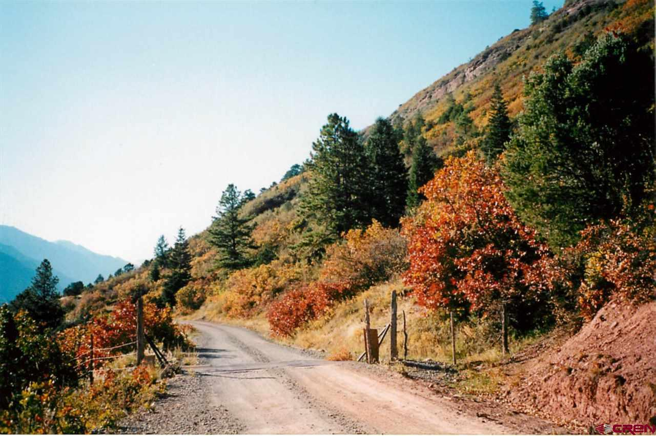 Amazing elevated views of the Ouray Valley.  This 35 plus acre parcel offers views, trees, privacy, and no covenants.  Sitting along Magic Carpet marvel the serenity.  Come build your dream home here.