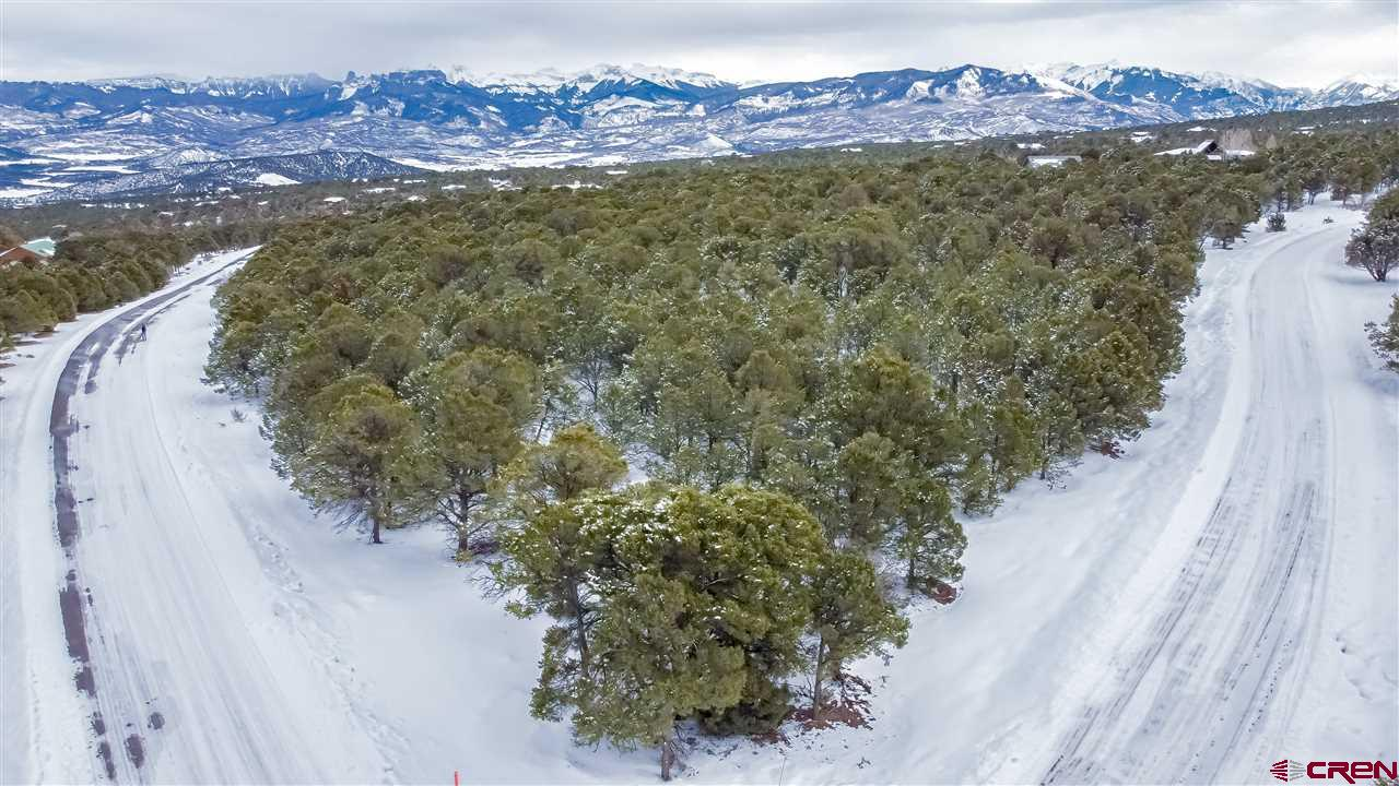 """Beautiful mountain lot in Loghill Village minutes from the Town of Ridgway Colorado. This 4.9 acre heavily treed property offers Cimarron and San Juan mountain views. Located on the corner of Canyon Drive and Juniper Road South it borders the open space """"Deer Trail"""" which is a part of the subdivision trail system. It is blanketed with Pinons, Scrub Oaks, and Juniper trees. Utilities and paid water tap are on site. Come to Ouray County and experience outdoor life as you build your custom dream home!"""