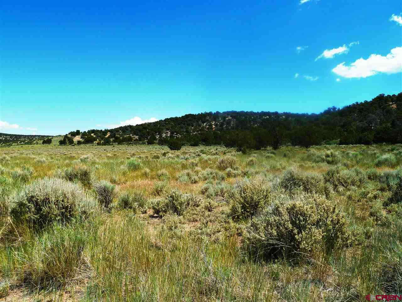 Lot 54 Masters Ranch Drive, Glade Park, CO 81523
