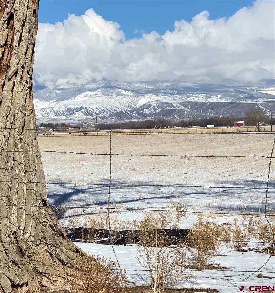 This 76 acre parcel located on California Mesa has approximately 70 shares of UVWUA water. There are lot's of possibilities here for growing crops or grazing livestock. There is a Tri-County water tap and a frost free installed for the stock tanks. With stunning Views of the Grand Mesa this would be a great place to build your dream home!