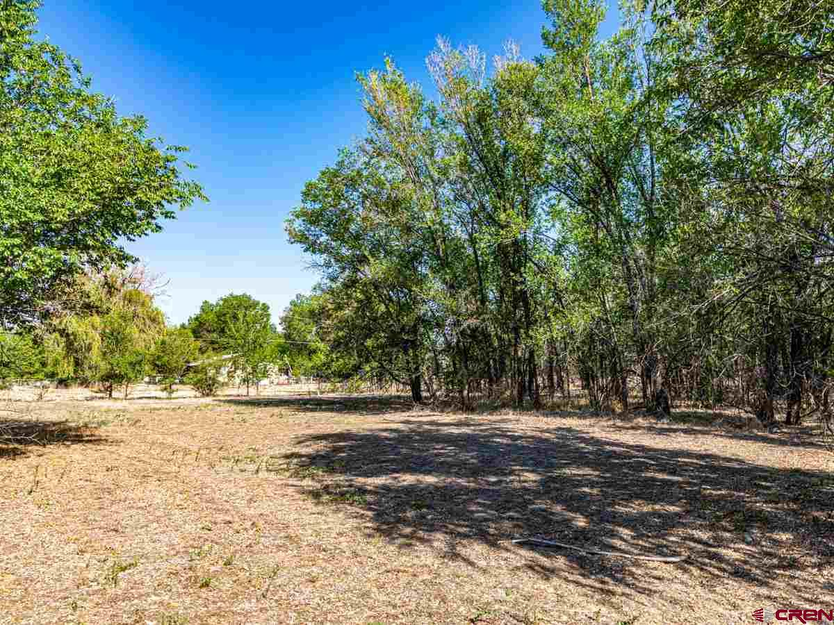 This 2.71 acre development lot is zoned for residential or medical and is located less than a block from Delta County Memorial Hospital in Delta, CO. The vacant lot has a paid water and sewer tap and is ready for your home, duplex, multi-family, medical office or a variety of other medical related uses. Conveniently located near one of Delta's newest and active development corridors, this property is conveniently located near the hospital, grocery stores, restaurants, banks and more. Located on Garnet Mesa just a few blocks from downtown Delta this lot also has excellent highway access nearby. Zoned Medical/Residential.