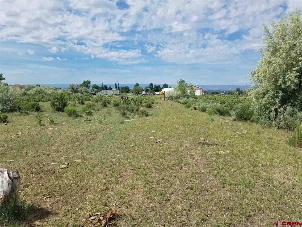 10950 Mesa View Loop, Eckert, CO 81418