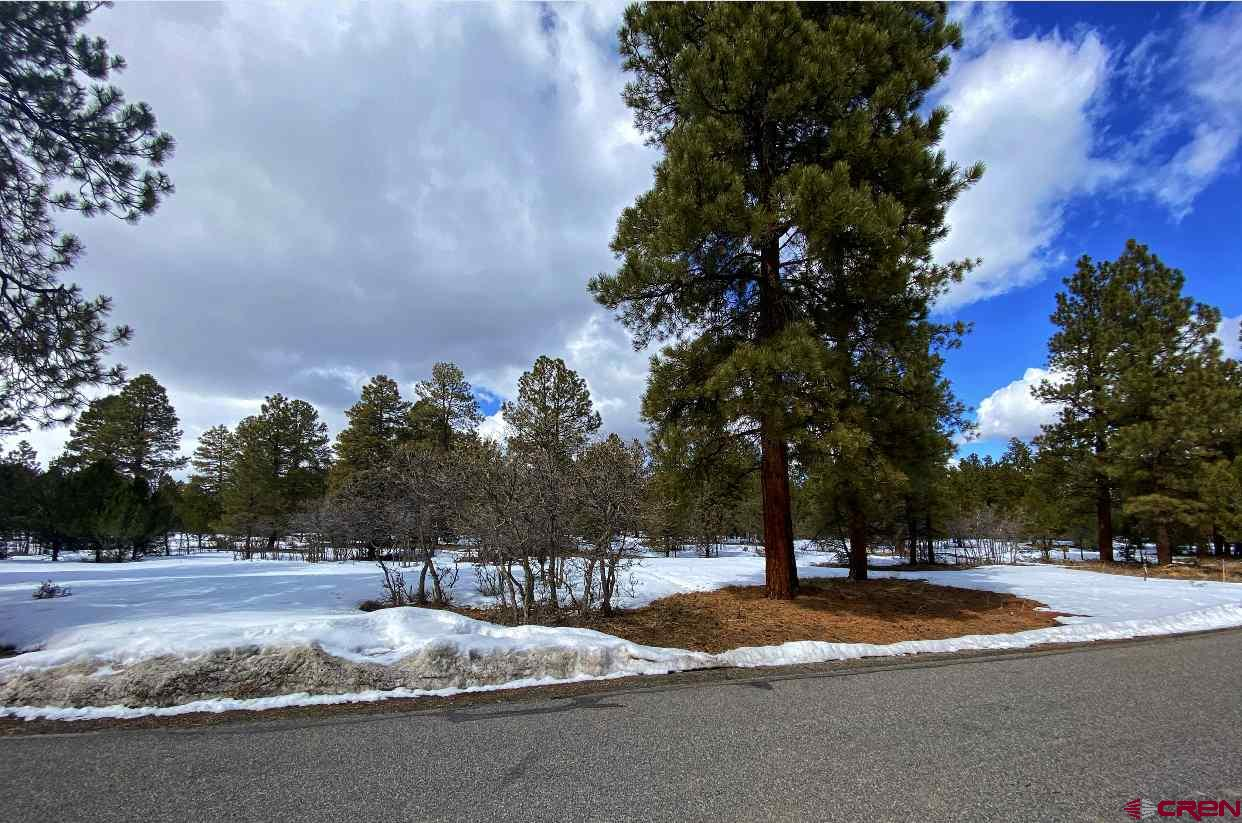Are you looking for the perfect lot on an Award winning Golf Course?  This lot is in the exterior portion, which is perfect for those who don't want to be on the Fairway.  Surrounded by towering Ponderosa Pine trees, this level property is waiting for you to build your dream home!  Water tap is PAID, and all utilities are at the lot line.  Located just 45 minutes to Telluride, 10 minutes to the town of Ridgway and 30 Minutes to Montrose.  Amazing price and phenomenal potential!