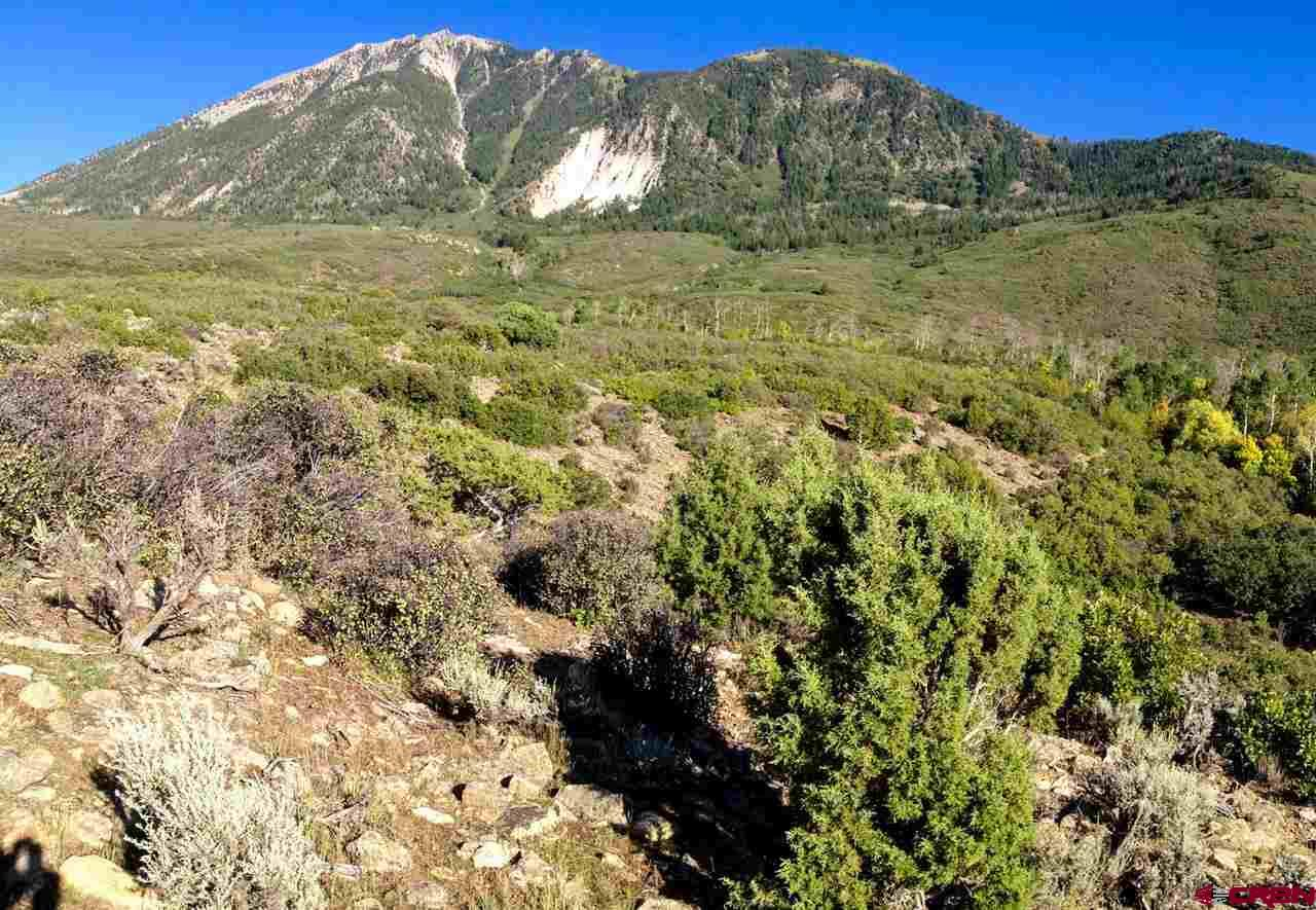 Highly Sought National Forest Inholding. This 40 acres is located behind the McClusky wildlife refuge on the road up to the Mt Lamborn trailhead. There are two live creeks on the property, numerous springs, awesome views, and excellent building sites. The abundant water attracts a remarkable amount of wildlife. The terrain ranges from sage to aspen groves. This is the closest National Forest inholding to Paonia, the only one in the southeast part of Delta County and one of only very few in all of Delta County. This is a unique property.
