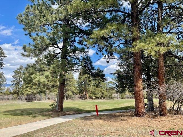 Gorgeous views of the fairway of the 7th hole.  Ponderosa pines tower over this beautiful easy build lot.   Play unlimited golf (cart fees only) with your Founders Club membership in the summer and cross country ski or snowshoe right our your door in the winter. With Ridgway and Ridgway State Park only 7 miles away,  Ouray 17 miles and Telluride only 35 miles you have the splendor and beauty of the Western slope and its wide array or outdoor recreation; hiking, mountain climbing, ice climbing, biking, fishing, skiing. Owner will carry with 50% down. Ask about a custom build package.