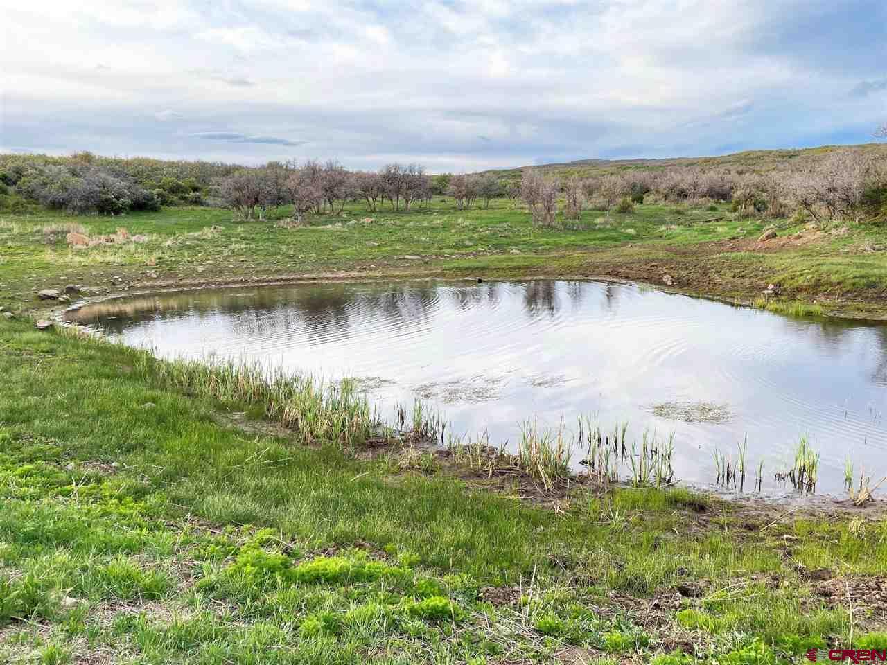 tbd oak Mesa Road, Hotchkiss, CO 81410