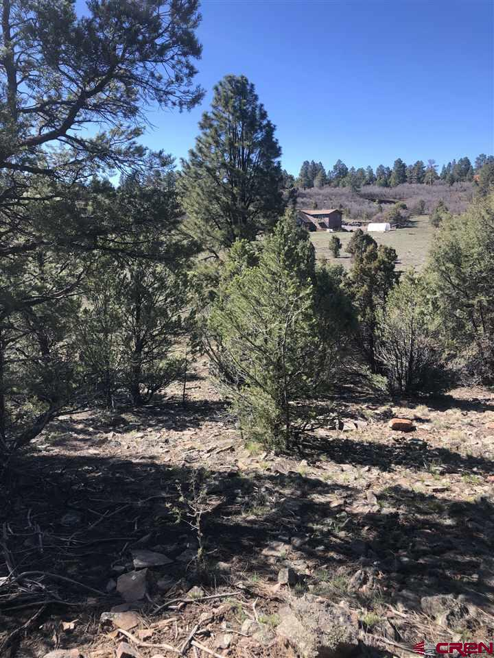 """Beautiful towering Ponderosa Pine trees, San Juan Mountain Views and easy access on a paved cul-de-sac to one of the most sought after 1 acre lots in Fairway Pines Divide Ranch Gold Club Community.  One acre lots with views are selling quickly.  This lot also backs up to the open green space that allows for more privacy.  You'll enjoy the walking paths and watching the assortment of wildlife from your perfectly sloped building site.   A 2 story home will enhance your views that will go from """"great"""" to """"magnificent"""".  The lot comes with a paid water tap (not installed).   Property owners become members of the Golf Club where you can enjoy golfing and entertainment at the Award Winning Divide Ranch Golf Course.  This property gives you quick access to Ridgway, and Montrose and a beautiful 39 mile drive to Telluride."""