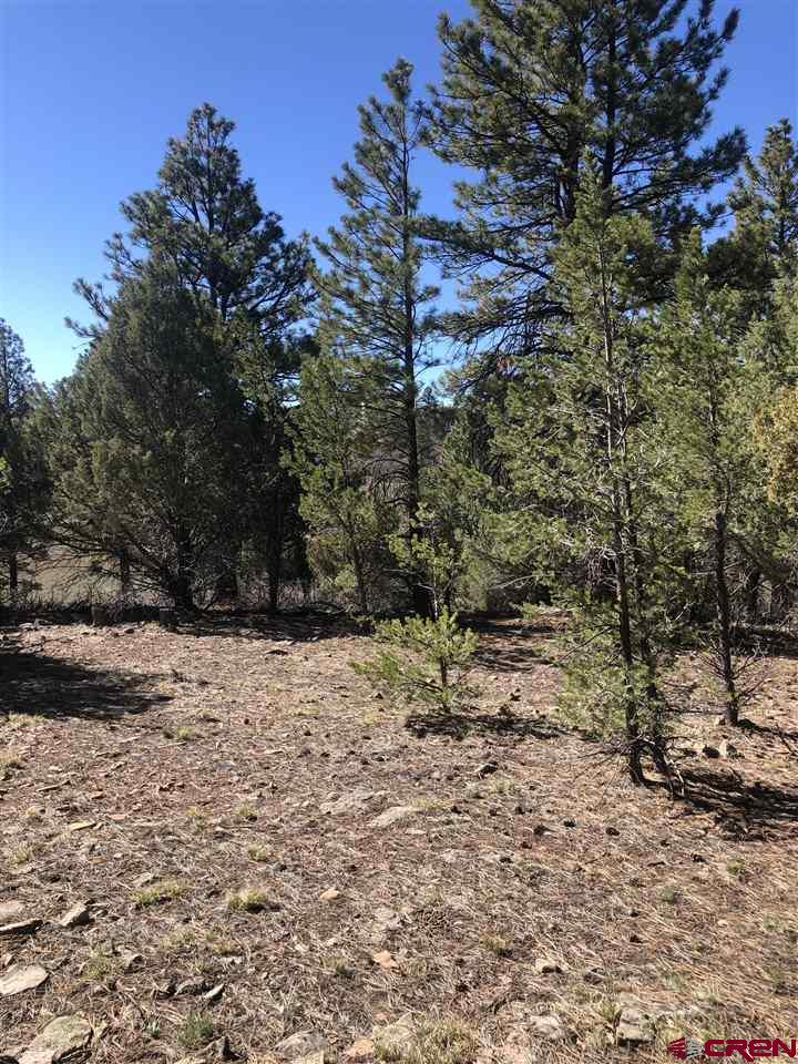 """Beautiful treed lot on a quiet cul-de-sac.  The lot will have a future tree lined  unique private driveway that will bring you to this amazing secluded building site,  sitting on over 1.4 acres.  Building your dream home here, in just the right angle will give you views of the San Juan Mountains and Cimarron mountain range.  Towering Ponderosa Pine trees, Pinion trees and oak brush makes this lot even more magical. This lot opens up to the protected greenspace ensuring a peaceful yard to enjoy the wildlife and mountain views.   Get your """"exercise"""" while enjoying the use of the award winning Divide Ranch Golf Course. Close to many Colorado Mountain recreational areas, including world class skiing and snowboarding in Telluride is just 40 miles away. Enjoy cultural events and dining throughout the year in Ouray and Ridgway, as close as 8 miles away. Montrose is located only 30 minutes from Gopher Ct and offers a regional airport, hospital, family and specialty physician offices and multiple grocery stores, as well as shopping and dining"""