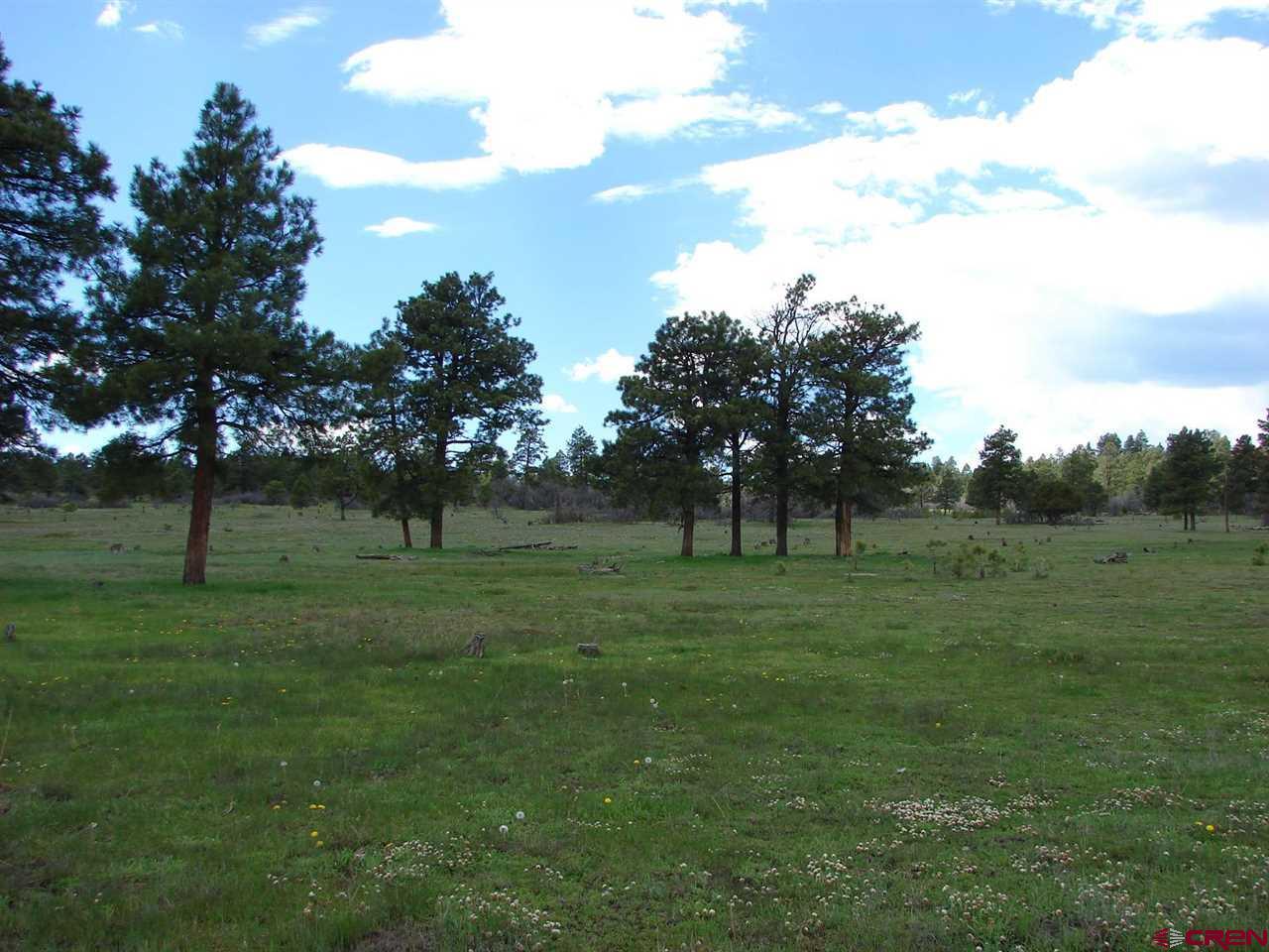 X Wildcat Circle Lot 35, Pagosa Springs, CO 81147