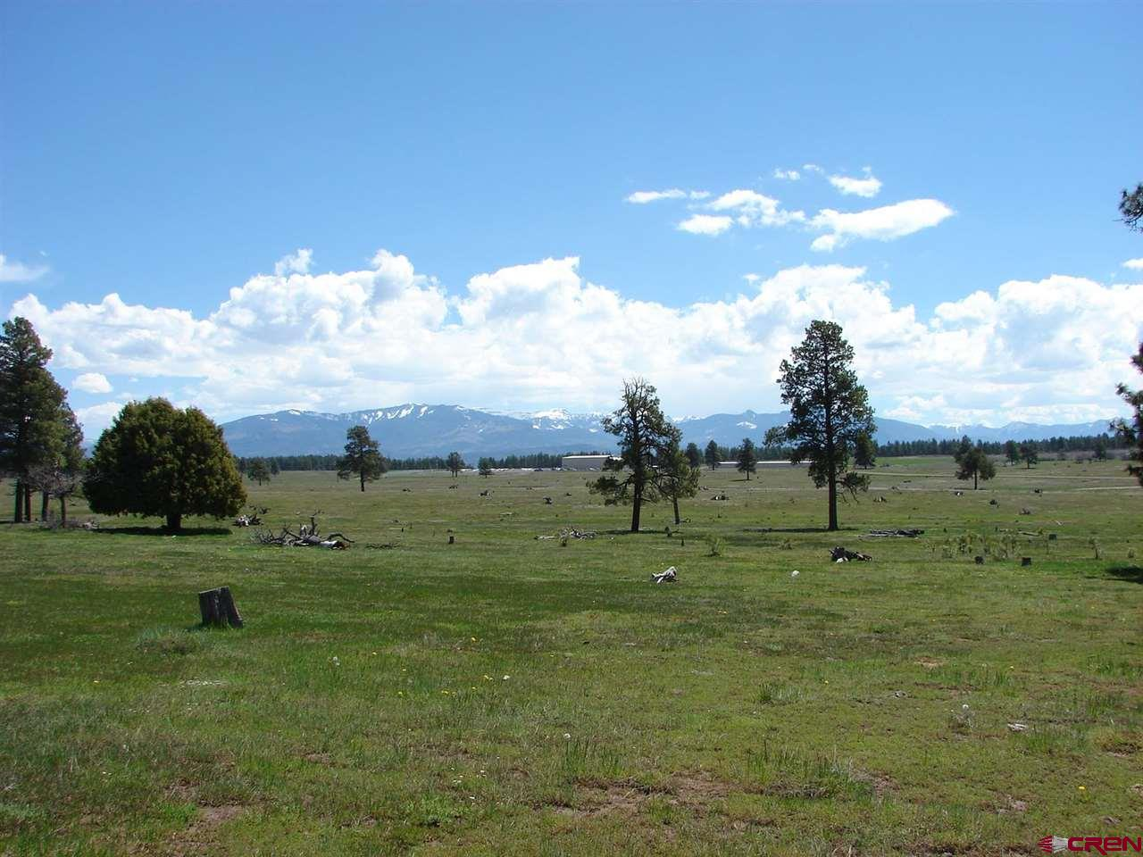 X Industrial Circle Lot 38, Pagosa Springs, CO 81147