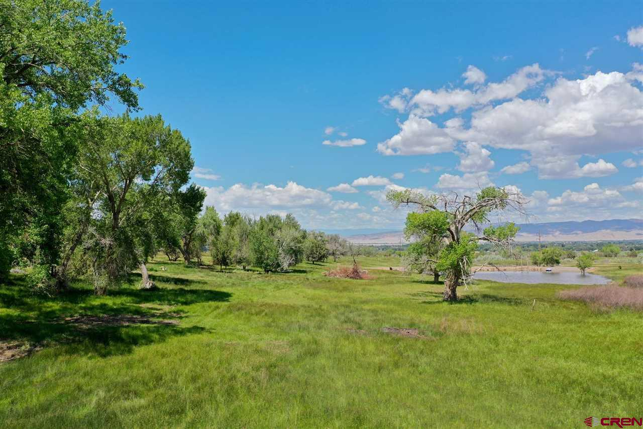 Rare parcel on Spring Creek approximately 35 acres of gorgeous land.  Charactor abounds, views, trees, AND a newly constructed pond!  Fenced and driveway in place, borders canal, no covenants.  One of the best places to build your dream home!  (Sale is subject to final plat approval.)