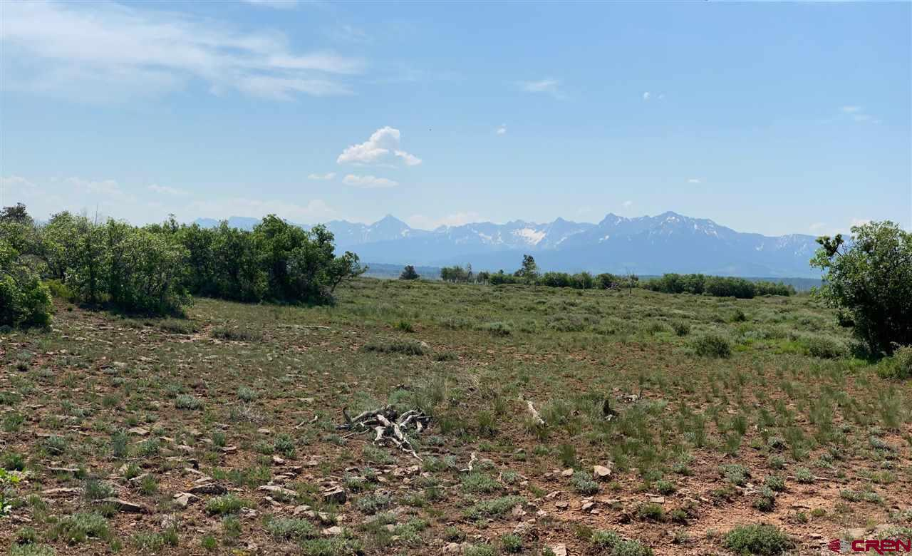 40 acres of pure mountain bliss. Incredible views of Sneffels Mountain Range in the heart of the San Juan Mountains. Tract 2 in the Panorama Acres community is centrally located in close proximity to Telluride, Ridgway, Ouray. Situated amongst a beautiful mix of Aspen and Spruce trees. Extremely private location with limited covenants.