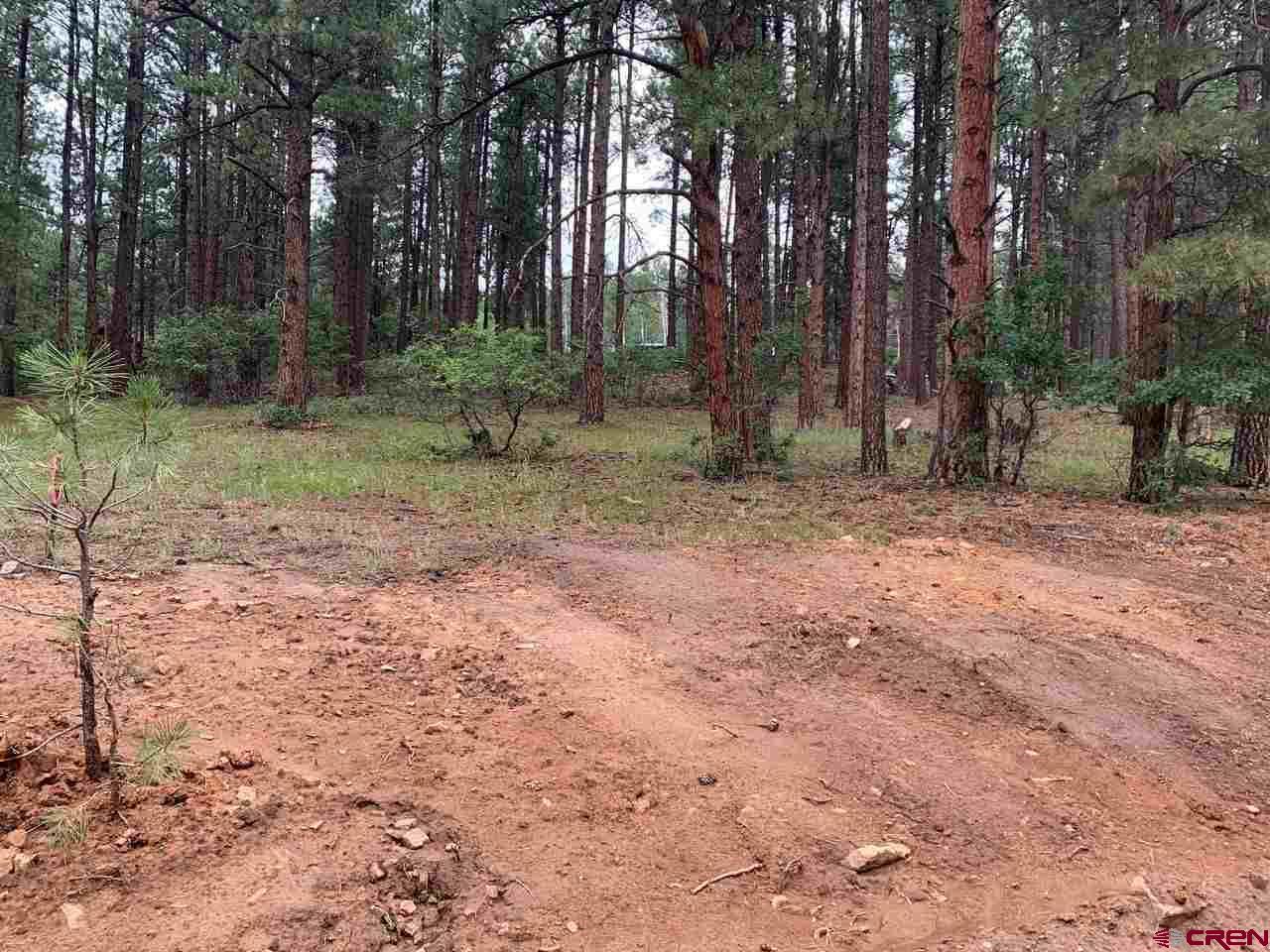 63 spruce way, Bayfield, CO 81122