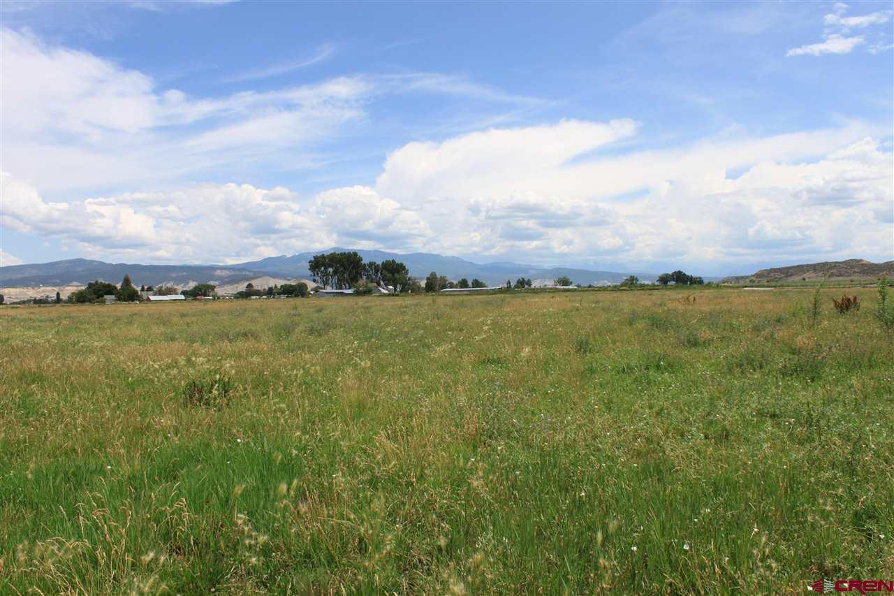 64 acres of prime ag land with approx. 62 shares of irrigation water and priority water! This would be an ideal spot to build your dream home because of the views of the San Juans and it being close to all the amenities of Montrose.