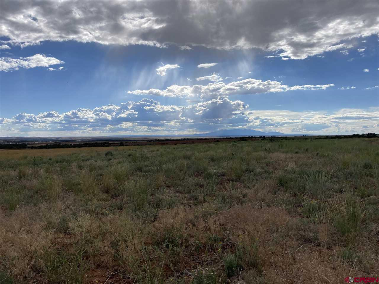 Lot 1 Road 14, Cahone, CO 81320