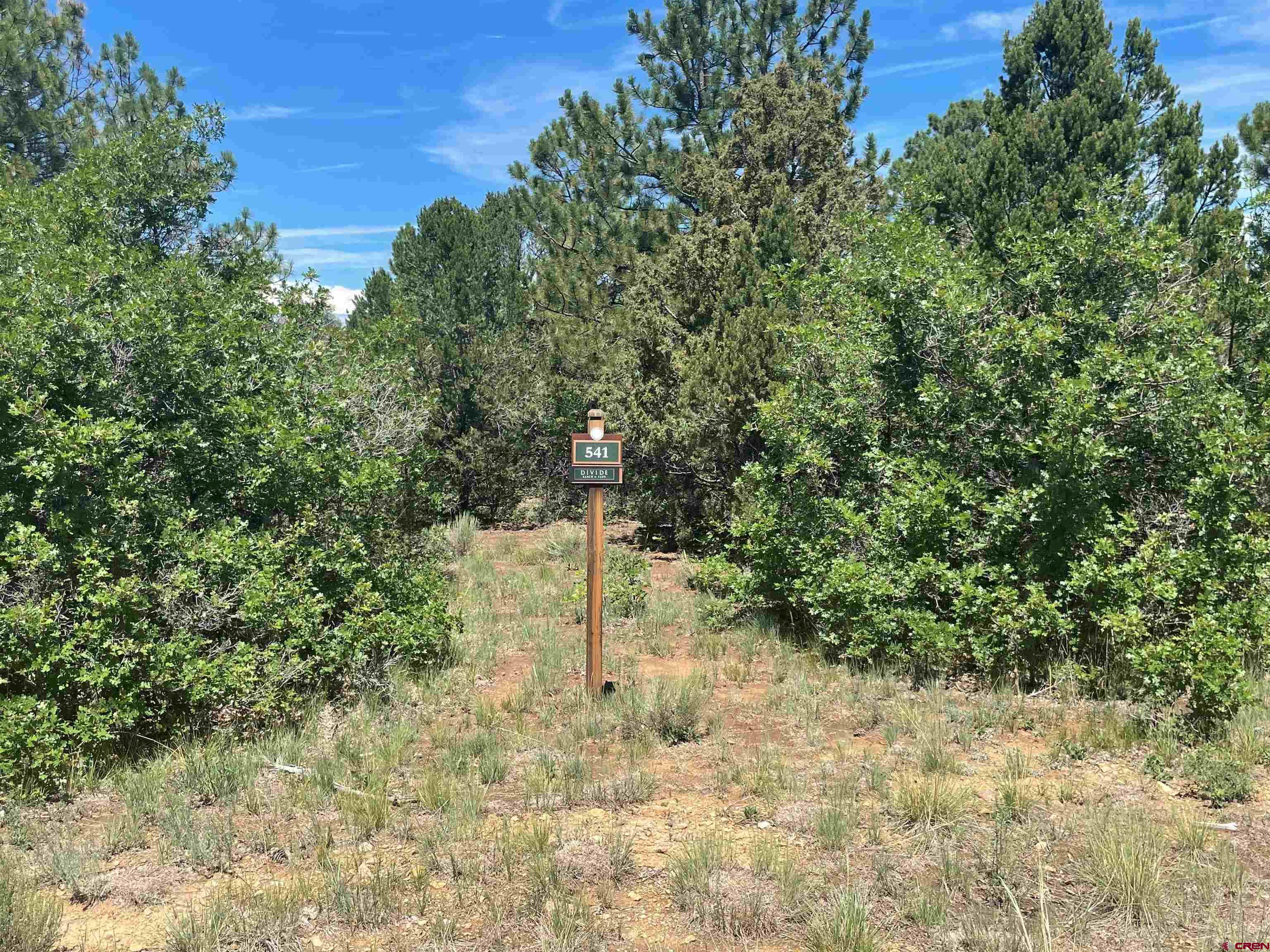 Gorgeous views of the fairway of the 17th hole. Ponderosa pines tower over this beautiful easy build lot. Views of the 16th green out your front door.  Play unlimited golf (cart fees only) with your Founders Club membership in the summer and cross country ski or snowshoe right out your door in the winter. With Ridgway and Ridgway State Park only 7 miles away,  Ouray 17 miles and Telluride only 35 miles you have the splendor and beauty of the Western slope and its wide array or outdoor recreation; hiking, mountain climbing, ice climbing, biking, fishing, skiing