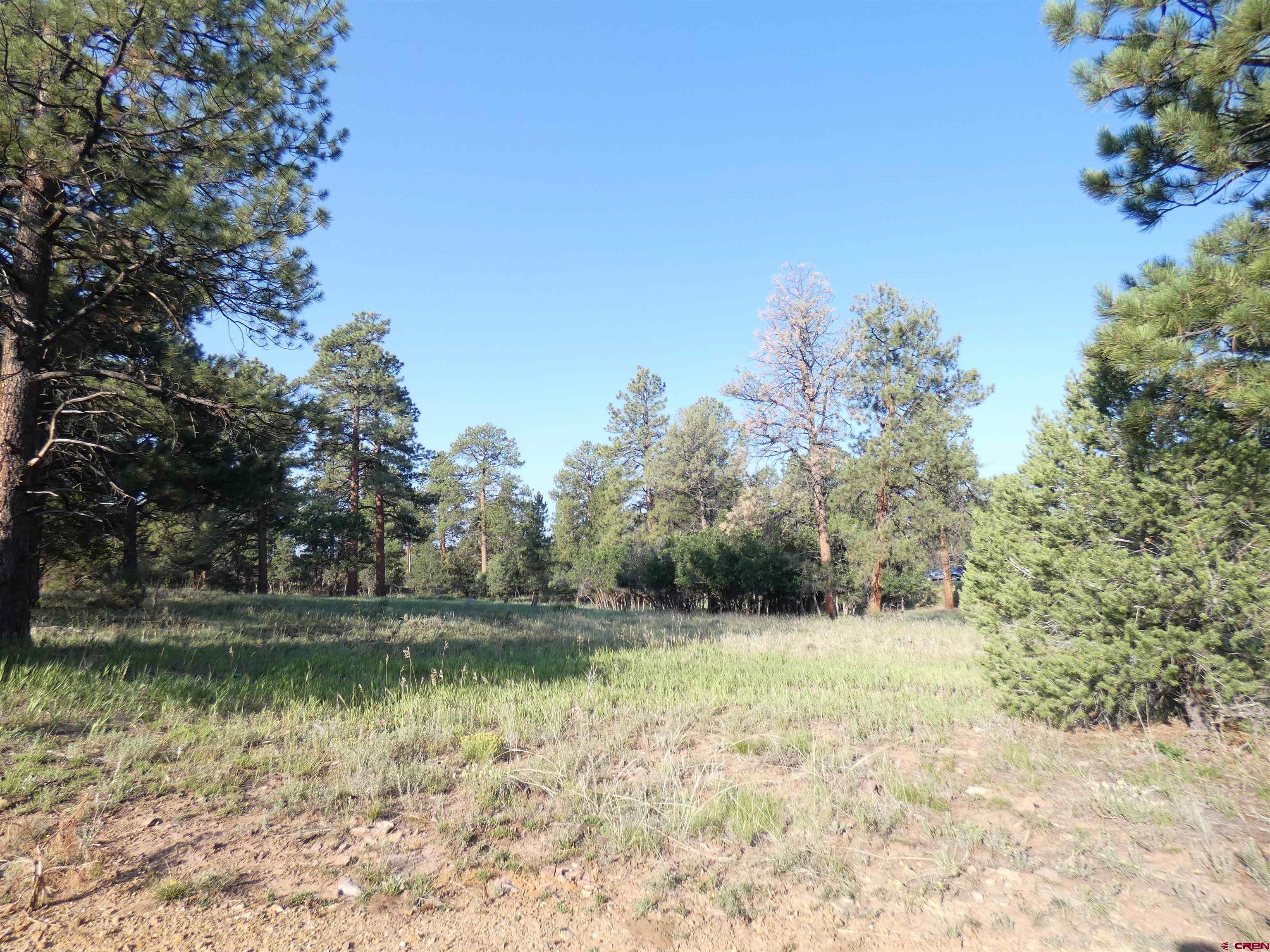 A beautiful, open, and ready to build lot in Fairway Pines with stunning Ponderosa Pines and view of the Cimarron Mountains. Home building sites are moving quickly so do not miss out on this one.  There is an Owner's Association transfer fee of $3,000 to be paid at closing by Buyer.