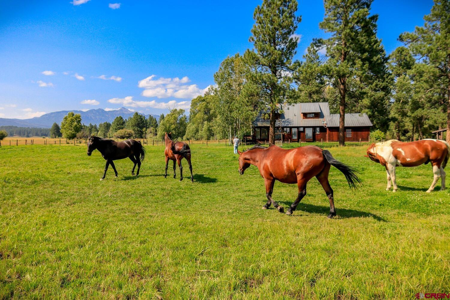4070 County Rd. 200, Pagosa Springs, CO 81147