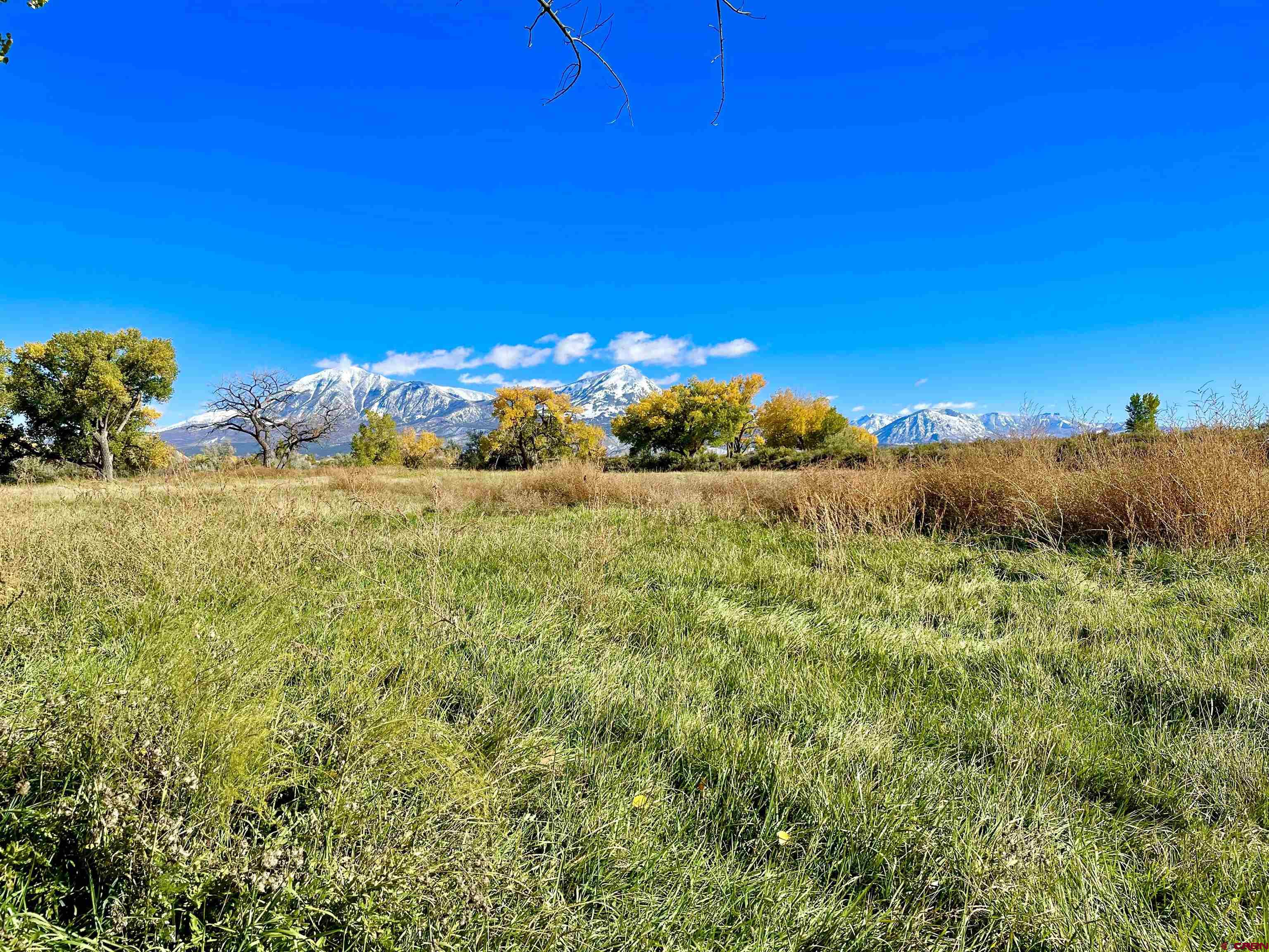 35971 Back River Road, Hotchkiss, CO 81419