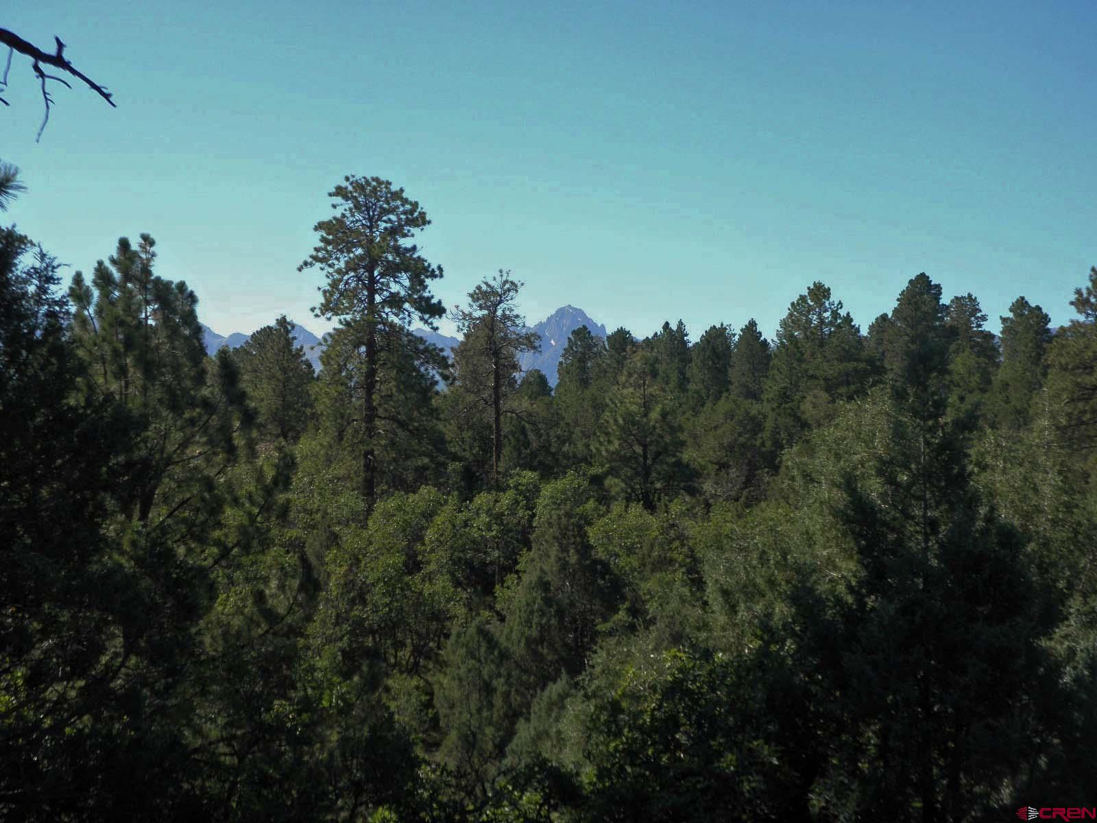 Nice views of Mt. Sneffels and the Sneffels Range, large mature Ponderosa Pines, great building site.  Make sure this lot is on the list to show buyers that want the forest and views.   There is a $3,000 membership transfer fee, buyer is to pay that fee.