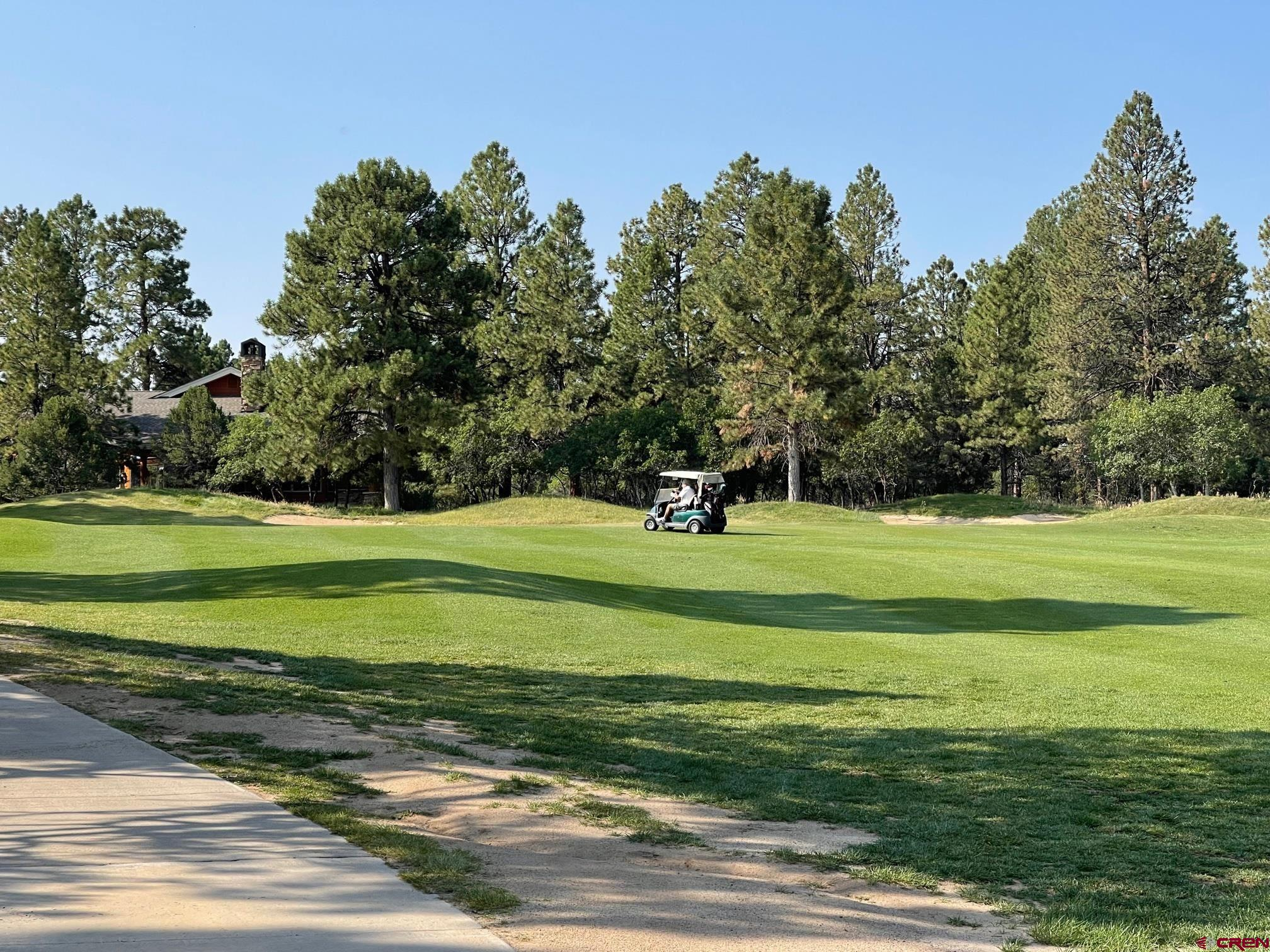 HUGE opportunity to get a golf course lot adjacent to the 2nd Fairway.  This lot is rather flat and usable and stacked up with Ponderosa Pines.  Easily accessible on a paved road to the lot line.  There are peek-a-boo views of the San Juans and Cimarrons.  This lot has private feel and has the openness of the fairway.  Power, water and natural gas are to the property line.  An engineered septic would be required.  Come take a look-see. The $3000 Golf and Country Club transfer fee shall be paid for by the Buyer.  A $1600+ membership fee is due annually and the amount can be subject to change.  HOA fees are $407/year.