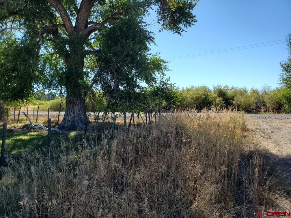 9318 County Road 16, Antonito, CO 81120