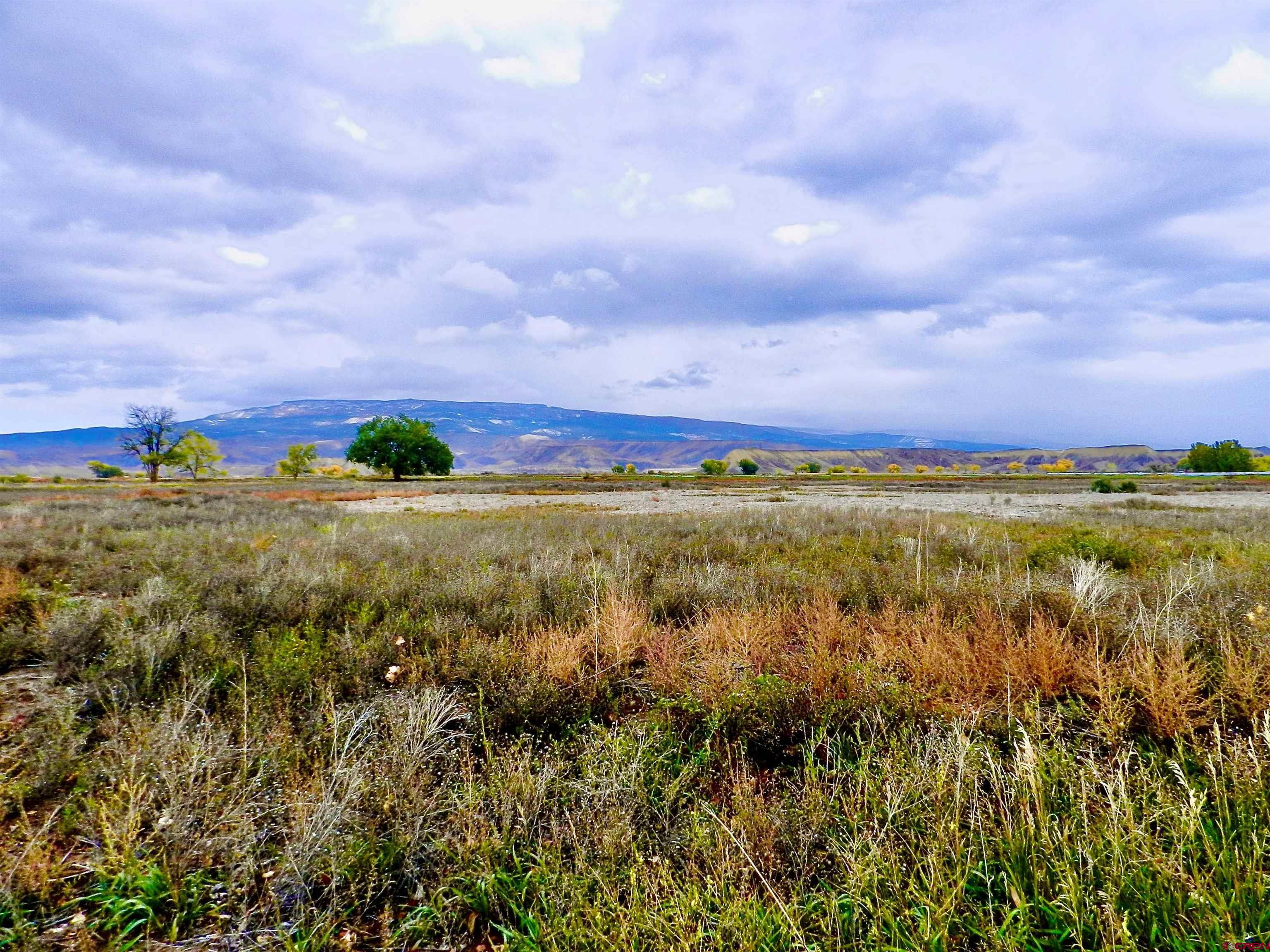 1475 and TBD Highway 50, Delta, CO 81416