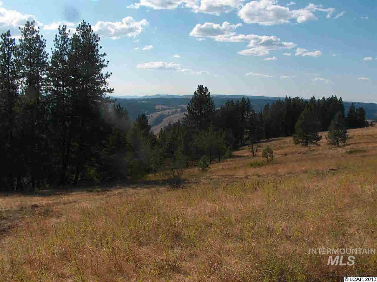 Lot 45 Phase 3 Twin River Ranch Sub-Div, White Bird, ID 83554