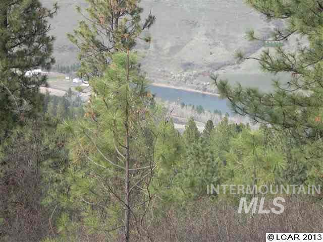 165 +/- acres of timberland with a beautiful view of the Clearwater River. Property is surrounded by the beauty of the mountains and river. Great hunting, fishing, and recreation and building sites!! Motivated Seller!!