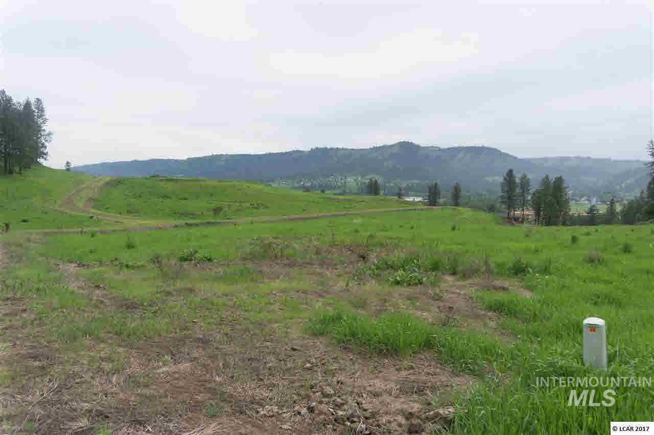 lot 14 River View Estates, Kamiah, ID 83536