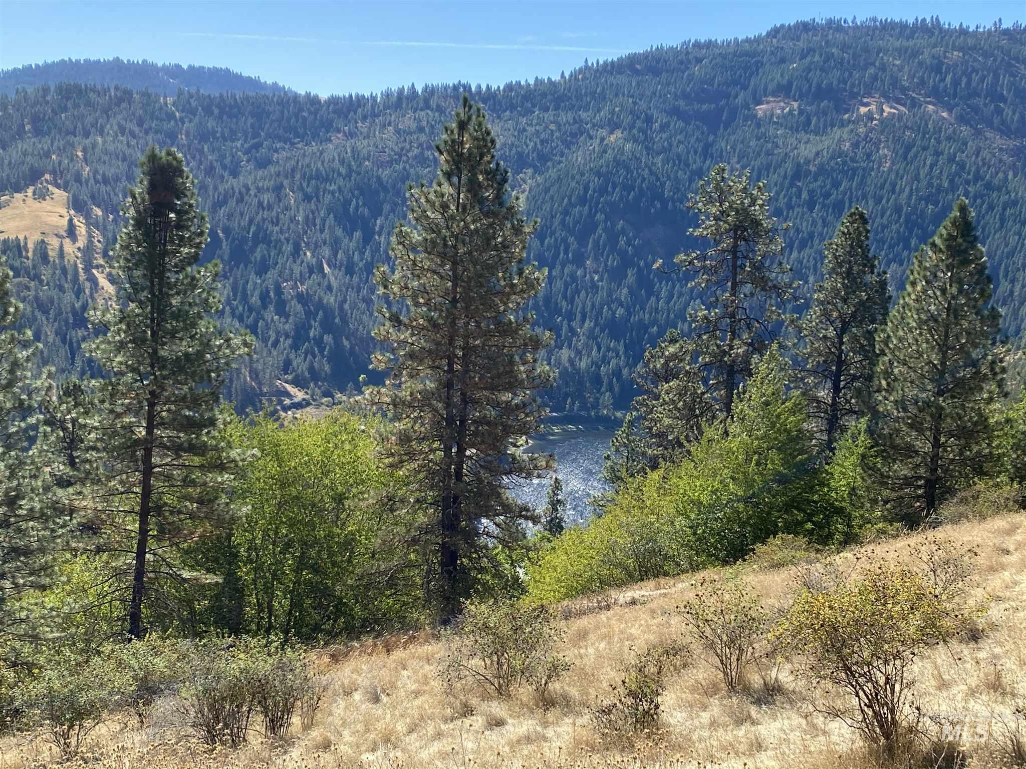 lot 3 blk1 Riverpointe Lane, Lenore, Idaho 83541, Land For Sale, Price $65,000, 319401