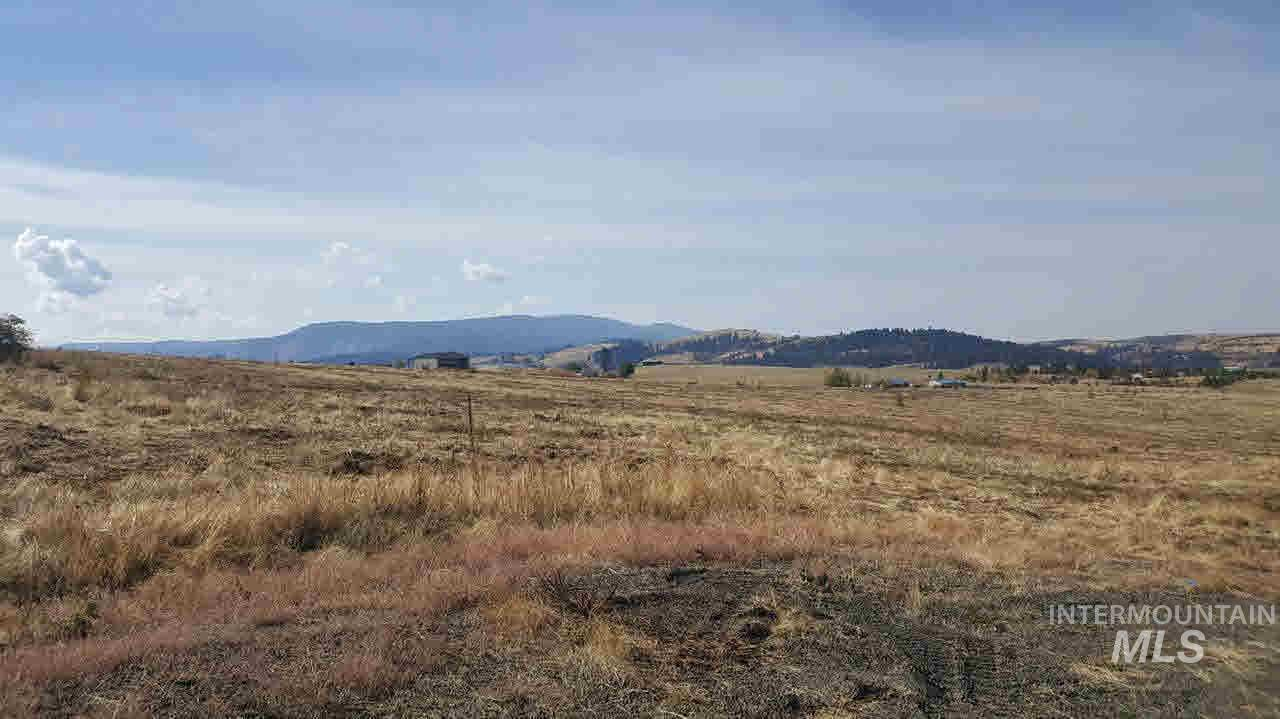 Lot 2 Golden Hills Drive, Grangeville, Idaho 83530, Land For Sale, Price $52,500, 319705