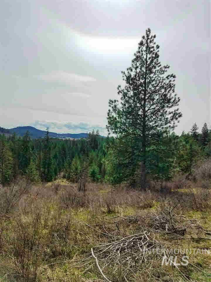 TBD Red Willow Rd, Kendrick, Idaho 83537, Land For Sale, Price $94,500, 319710