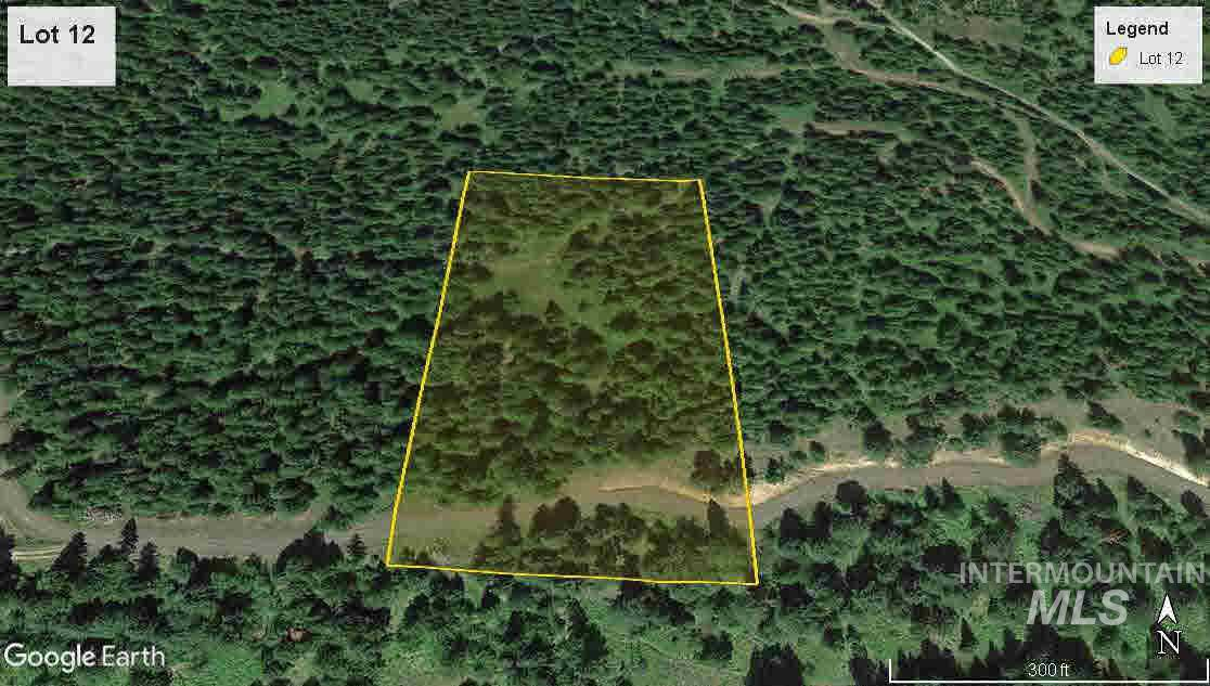 tbd Lot 12 Bland Road, Lenore, Idaho 83541, Land For Sale, Price $39,500, 322233