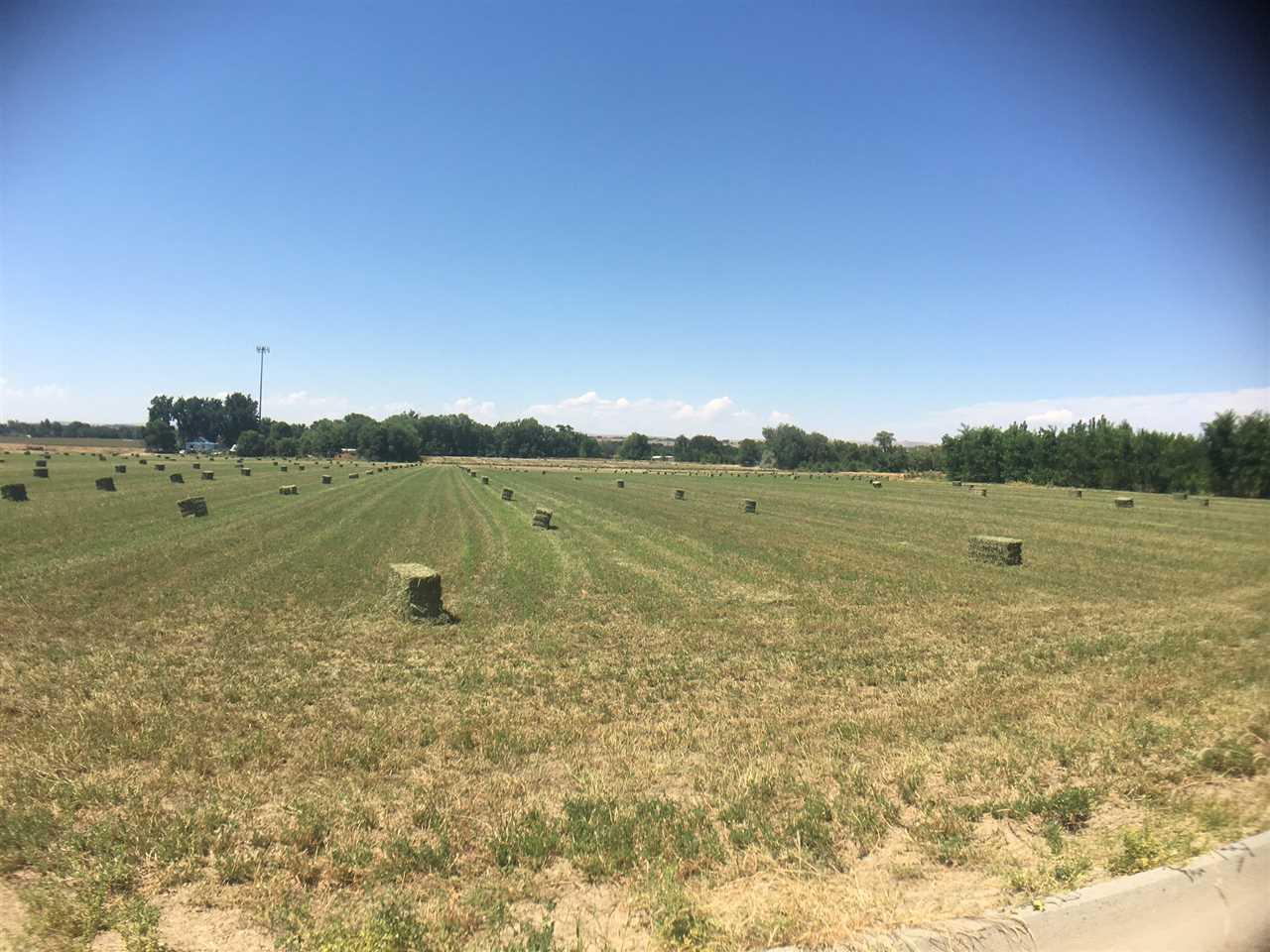 TBD Iowa Ave,Payette,Idaho 83661,Farm & Ranch,TBD Iowa Ave,98670558